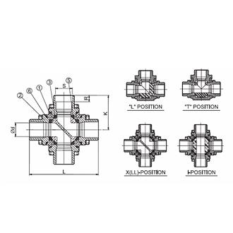 mv-17(2).jpg