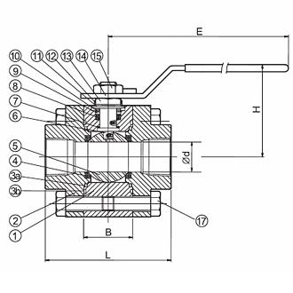mv-13(1).jpg